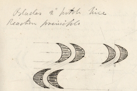 Steam turbine blades from an early sketch by Sir Charles Parsons